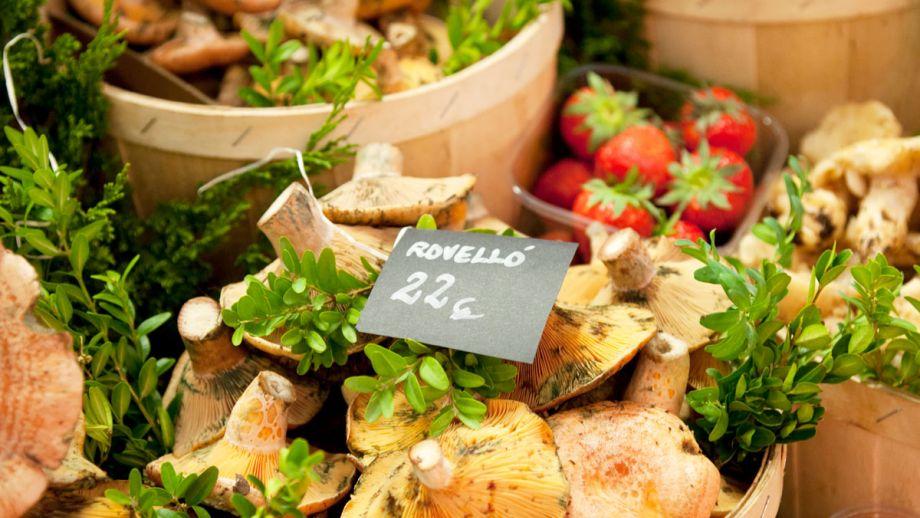 Reus ganadores del concurso cocina sobre ruedas for Canal cocina concursos