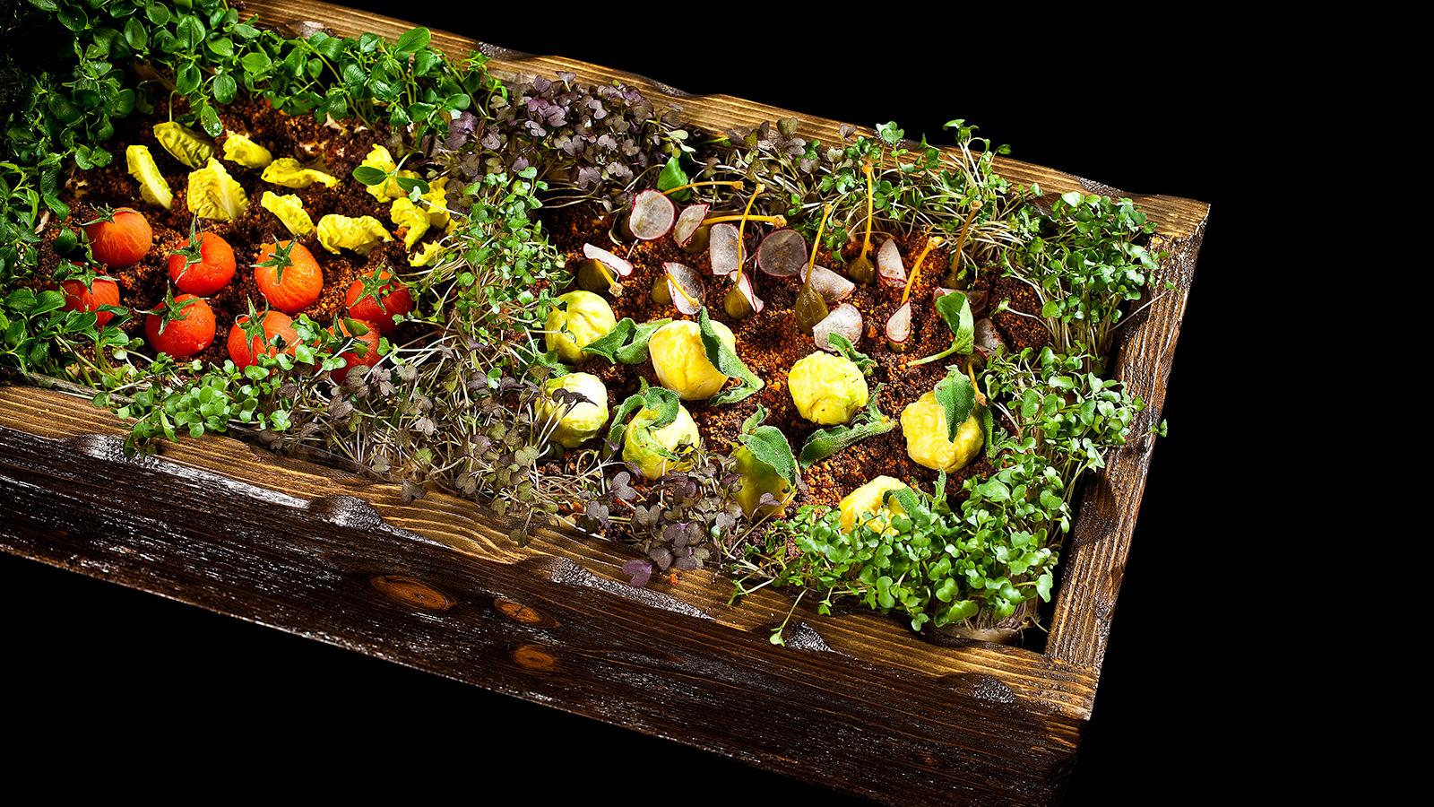 Huerto de hierbas amargas y verduras encurtidas paco for Preparacion de jardines